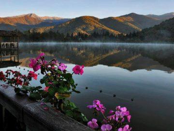 lopota lake свадьба в кахетии